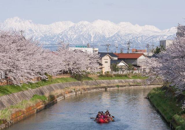 富山でひとり旅をするなら自然を観光・体験できる【エコロの森】~プランや料金のお問い合わせはお気軽に~