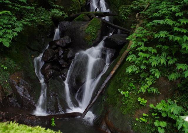観光ガイドと富山をめぐるツアーへの参加をご希望なら