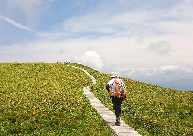 富山で観光ガイドとの旅やスノーシュー・ピクニックを楽しむなら【エコロの森】へ
