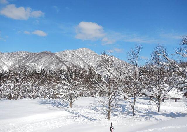 富山の観光巡りは【エコロの森】へ~富山の自然・文化・歴史に触れる旅にご案内~