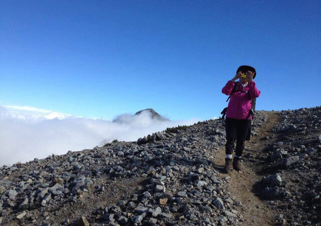 富山のツアーガイドは【エコロの森】~豊富なプランを比較して希望のツアーをお選びください~