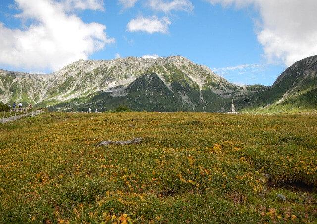 富山で体験ツアーに関する料金などのお問い合わせは【エコロの森】まで